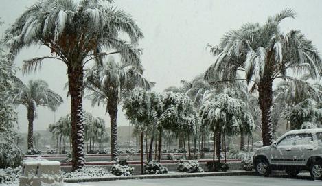 FastBuds: Снег в Калифорнии!