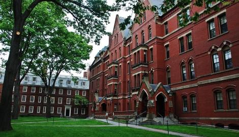 Доказано Гарвардом: каннабис повышает когнинтивные функции