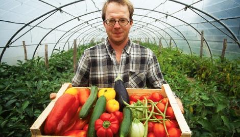 Ученые нашли способ увеличить урожайность растений в разы