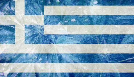 Греция начала выдавать лицензии на выращивание медицинской mj