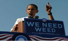 Обама заблуждается насчет марихуаны (с)