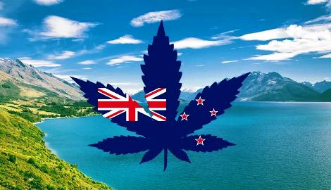 Новая Зеландия голосует за легализацию каннабиса