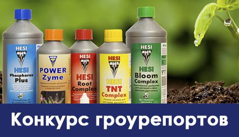 Конкурс гроурепортов от HESI – какой способ выращивания выберешь ты?