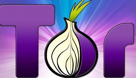 Россия лидирует среди стран пользующихся Tor браузером