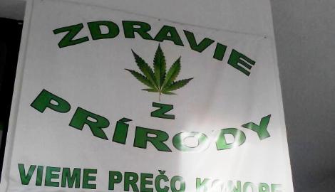 В Словакии задумались о декриминализации марихуаны