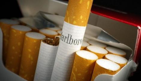Табачные магнаты будут выращивать mj в Канаде