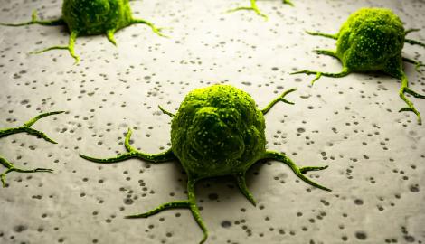 Видео: Конопля лечит Рак