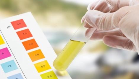 Обзор Dzagi: гид по pH-тестам