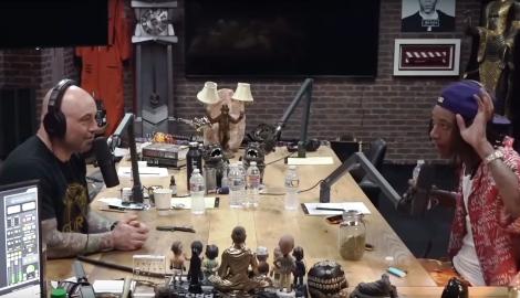 Видео: Джо Роган и его гости