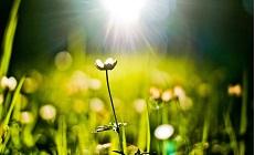 МАКСимальная весна