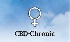 Серьезная медицина: новая линейка от Serious Seeds с высоким содержанием CBD.