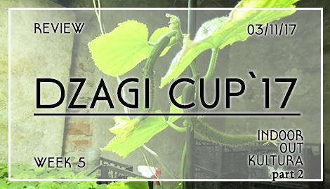 Новости DzagiCup17: обзор индора, аута и культуры. Неделя 5. Ч2