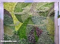 Стены - регуляторы ливневых осадков