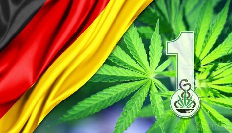 Больше 80% немцев поддерживают легализацию