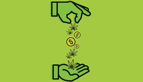 Канада: Каннабис внёс $8,26 в ВВП страны