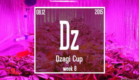 Новости DzagiCup'15. Неделя 8. Символическая