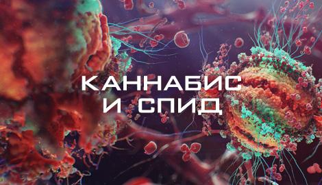 Каннабис и лечение ВИЧ\СПИДа