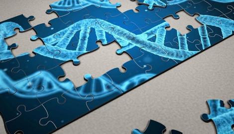 Каннабис и ДНК человека