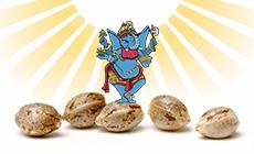 Бонусы от Sweet Seeds в каждом заказе!