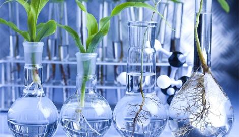 На Урале будет создан центр биотехнологий