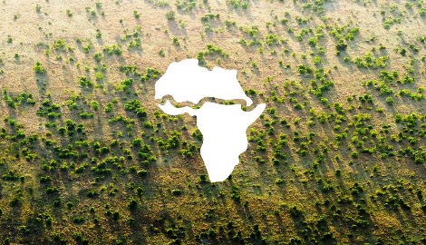 «Великая Зеленая Стена» в Сахаре
