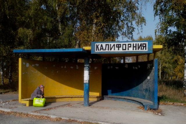 На новой автобусной остановке Новосибирска изображен мужчина с аутдорным кустом :)