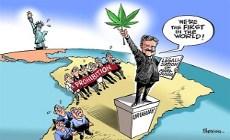 Уругвай: открыты официальные курсы по выращиванию марихуаны