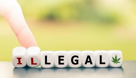Легализация в Америке. Год спустя