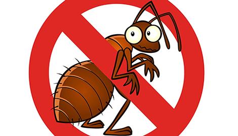 Тест - раздача инсектицида
