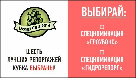 DzagiCup14: финалисты выбраны. На очереди спецноминации