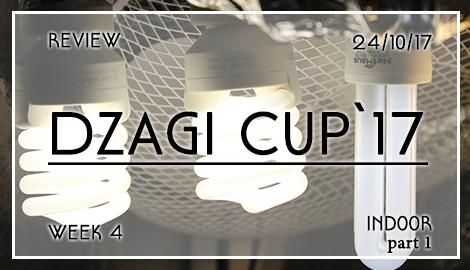 Новости DzagiCup17: Обзор индора. Неделя 4. Ч.1