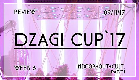 Новости DzagiCup17: Обзор индора, аута и культуры. Неделя 6. Ч1