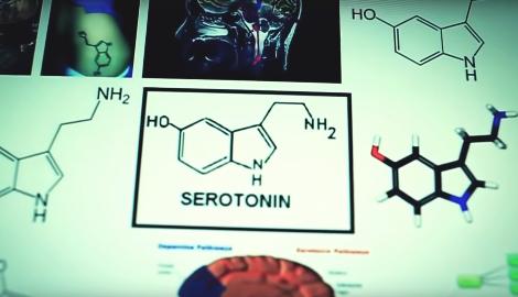 Фильм: От нейронов к нирване. Медицинское применение психоделиков (2013)