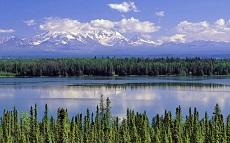 Аляска станет первым американским штатом с легальными кофешопами