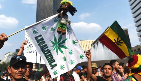 Мексика хочет заработать на легализации марихуаны, чтобы спасти экономику