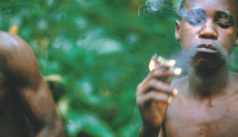 Жизнь в сердце Конго