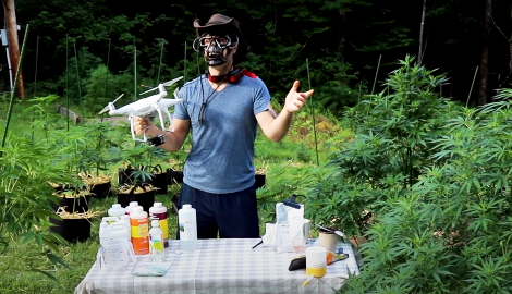 Видео: Аутдор (Лучшие средства для подкормки по листу)