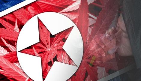 Каннагеография: Северная Корея