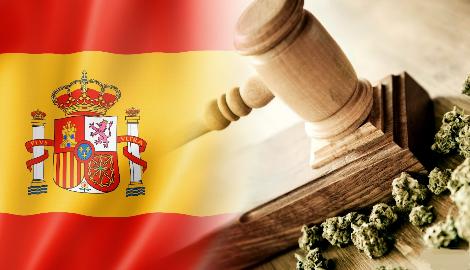 Каннабис в Испании: Понятия и нормы законодательства