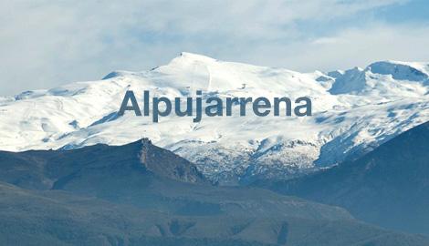 Как в мою жизнь вошла Alpujarrena - откровения гровера