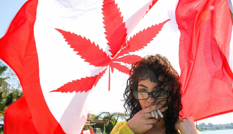 Канада: Итоги спустя год легализации каннабиса