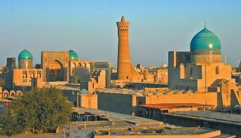 В Узбекистане появятся новые теплицы с гидропоникой