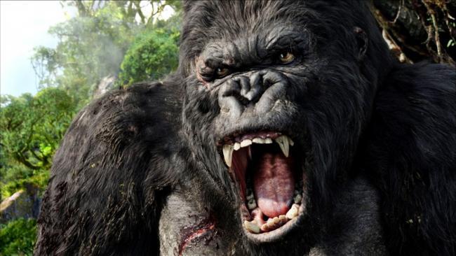 Сила гориллы!