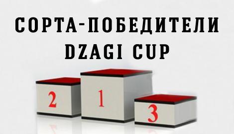 Сорта - победители DzagiCup