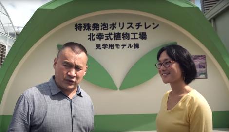 Видео: Ситиферма. Япония, 1 серия (Горшков)