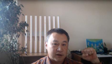 Видео: Указ Мишустина и КБД (Горшков)