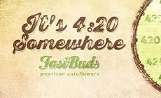 FastBuds: В будущем мы ждем двухметровых лесов из автоцветов