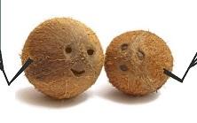 Новое удобрение для кокосовых субстратов от General Hydroponics