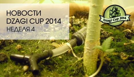 Новости Dzagi Cup: неделя 4