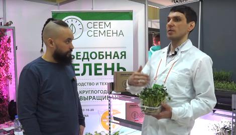 Видео: Полезная микрозелень